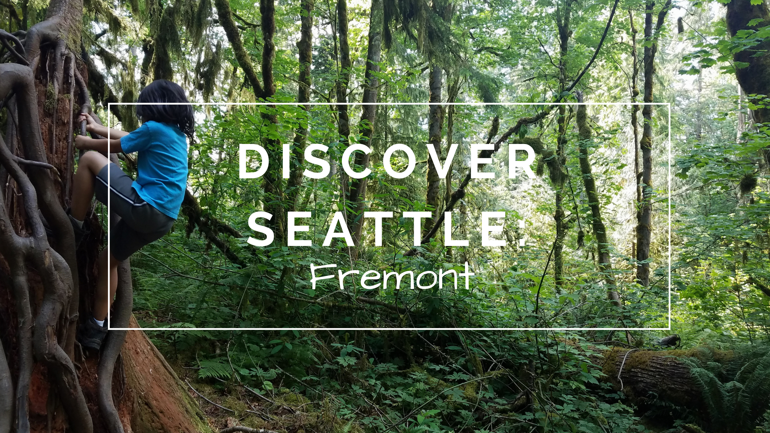 Discover Seattle: Fremont