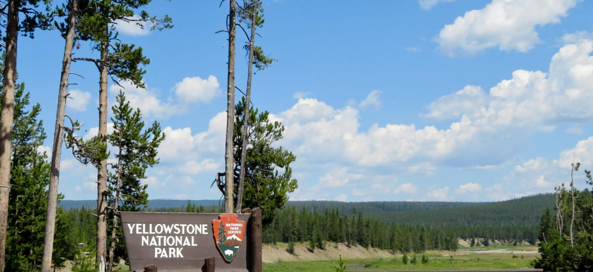 How to Spend a Day at Yellowstone National Park